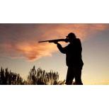 Renovación licencia de caza.